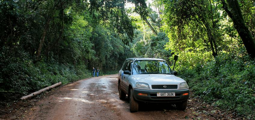 uganda Self Drive Safari